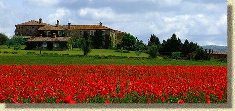 Farmhouse le sorbelle d 39 orcia farm holiday pienza tuscany - Agriturismo bagno vignoni ...